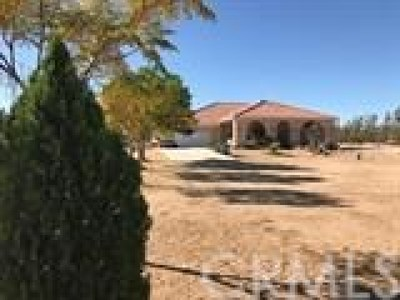 Hesperia Single Family Home For Sale: 10300 4th Avenue