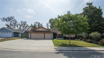 Chino Single Family Home For Sale: 13319 Branding Iron Place
