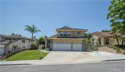 Chino Hills Single Family Home For Sale: 1843 Walnut Creek Drive