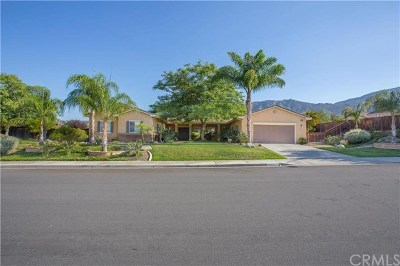 Lake Elsinore Single Family Home For Sale: 14961 Eureka Street