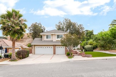 Chino Hills Single Family Home For Sale: 15291 Green Valley Drive