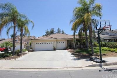 Corona Single Family Home For Sale: 13161 Glandt Court