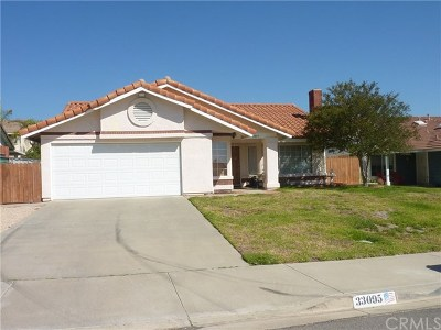 Lake Elsinore Single Family Home For Sale: 33095 Via Oeste