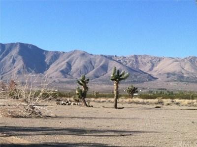 San Bernardino County Residential Lots & Land For Sale: 39708 Calico Boulevard