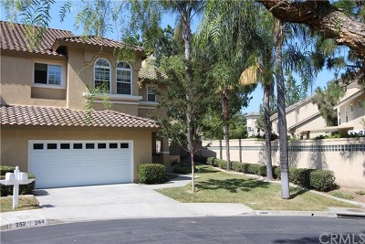 San Dimas Single Family Home For Sale: 244 Calle Rosa