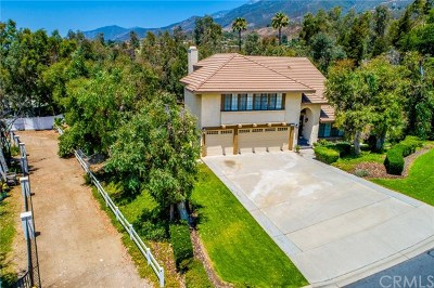 Single Family Home For Sale: 10154 Whispering Forest Drive