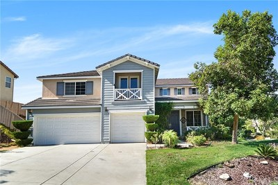Lake Elsinore Single Family Home For Sale: 31928 Birchwood Drive