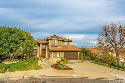 Chino Hills Single Family Home For Sale: 3044 Daybreak Court