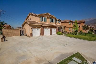 Fontana Single Family Home For Sale: 5202 Stork Court