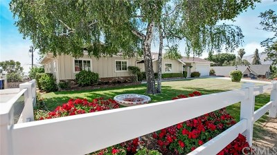 Yucaipa Single Family Home For Sale: 11494 Golden Gate Drive