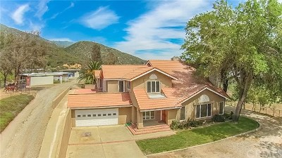 Devore Single Family Home For Sale: 1015 Deercrest Drive