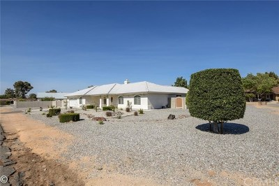 Apple Valley Single Family Home For Sale: 14033 Chogan Road