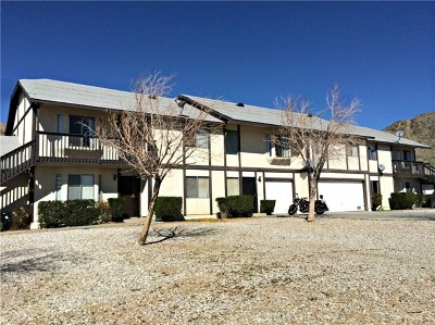 Apple Valley Multi Family Home For Sale: 20138 Carlisle Road