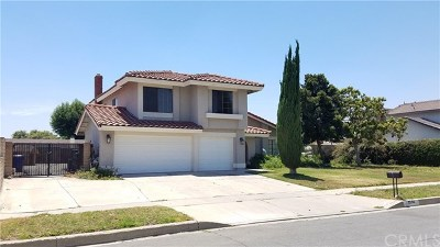 Rialto Single Family Home For Sale: 2594 N Palm Avenue