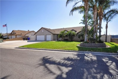 Riverside Single Family Home For Sale: 4761 Meadow Land Drive