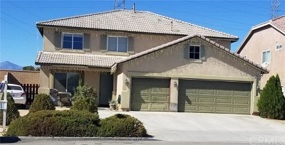 Hesperia Single Family Home For Sale: 9226 Ocotillo Avenue