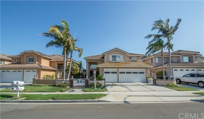 Chino Hills Single Family Home For Sale: 5985 Park Crest Drive