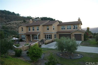 Bonsall Single Family Home For Sale: 1291 Chateau Montelena