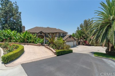 Orange County Single Family Home For Sale: 450 S Estate Drive