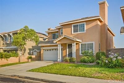 Fontana Single Family Home For Sale: 14679 Deer Drive