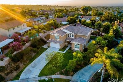 Corona Single Family Home For Sale: 1149 Athlone Circle