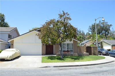 San Juan Capistrano Single Family Home For Sale: 31071 Via Madera