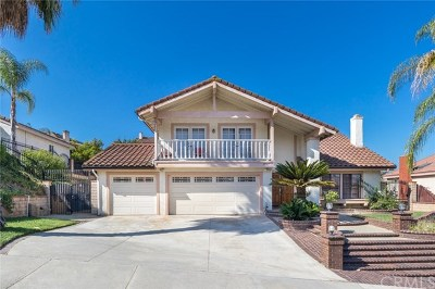 Rowland Heights Single Family Home For Sale: 20162 Corrinne Lane