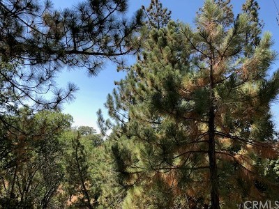 Lake Arrowhead CA Residential Lots & Land For Sale: $6,900