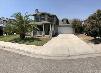 Lake Elsinore Single Family Home For Sale: 313 Silver Street
