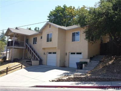 Paso Robles Single Family Home For Sale: 28 Fresno Street