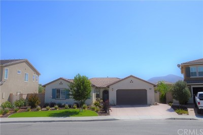 Winchester Single Family Home For Sale: 35070 Orchard Crest Court