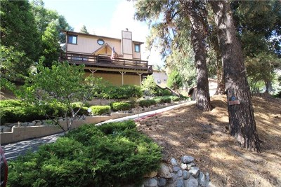 Crestline Single Family Home For Sale: 490 S Dart Canyon Road