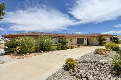 Apple Valley Single Family Home For Sale: 13463 Delaware Road