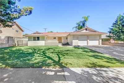 Upland Single Family Home For Sale: 1748 N Kelly Avenue
