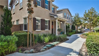 Eastvale Single Family Home For Sale: 6074 Rosewood Way