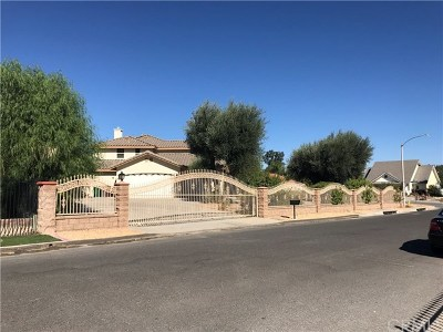 Hemet Single Family Home For Sale: 40365 Thornton Avenue