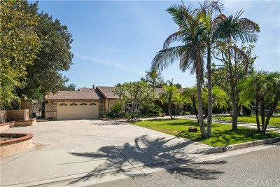 Glendora Single Family Home For Sale: 246 Catherine Park Drive