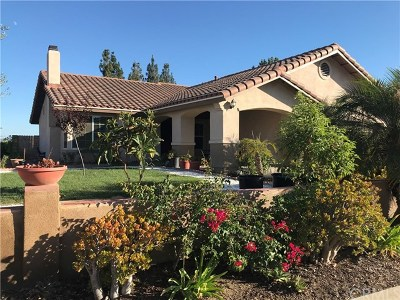 Walnut Single Family Home For Sale: 462 Vista Del Norte