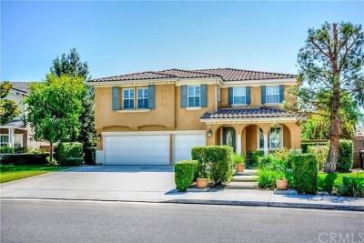 Eastvale Single Family Home For Sale: 12463 Black Horse St