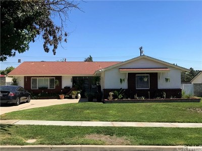 Upland Single Family Home For Sale: 1672 Shamrock Avenue