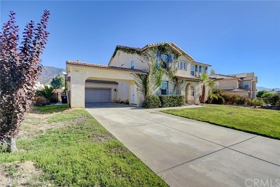 San Bernardino Single Family Home For Sale: 1862 W Ash Street