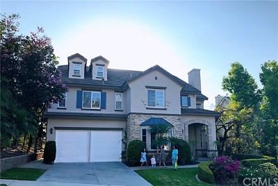 Mission Viejo Single Family Home For Sale: 23689 Castle Rock