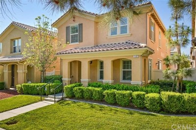 Eastvale Single Family Home For Sale: 7102 Village Drive