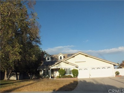 Rialto Single Family Home For Sale: 2835 N Orange Avenue
