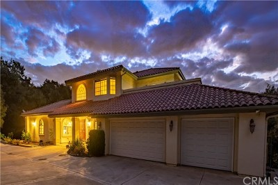 Chino Hills Single Family Home For Sale: 1131 Village Drive