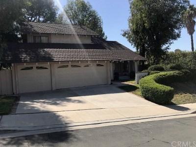 San Dimas Single Family Home For Sale: 818 Via Alameda