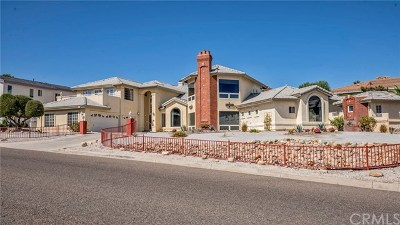 Victorville Single Family Home For Sale: 17970 Vista Point Drive