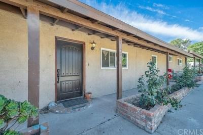 Rialto Single Family Home For Sale: 1591 W Persimmon Street