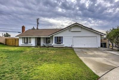 Rialto Single Family Home For Sale: 409 W Grant Street