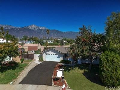 Alta Loma Single Family Home For Sale: 9954 Albany Avenue